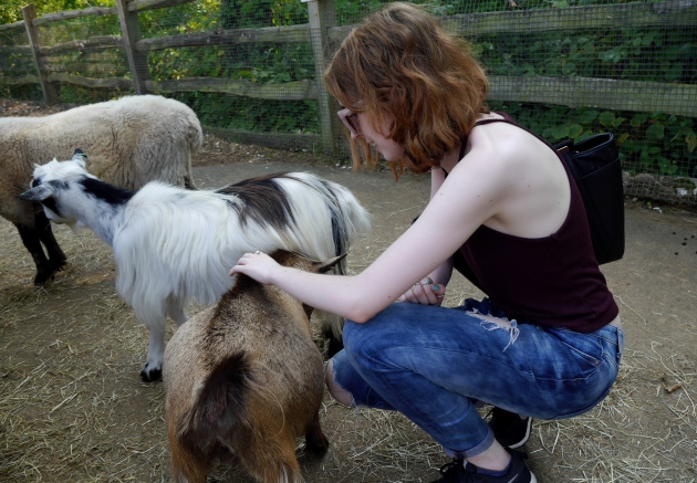 Blogger with Goats