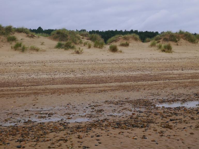 Holkham Sand Dunes
