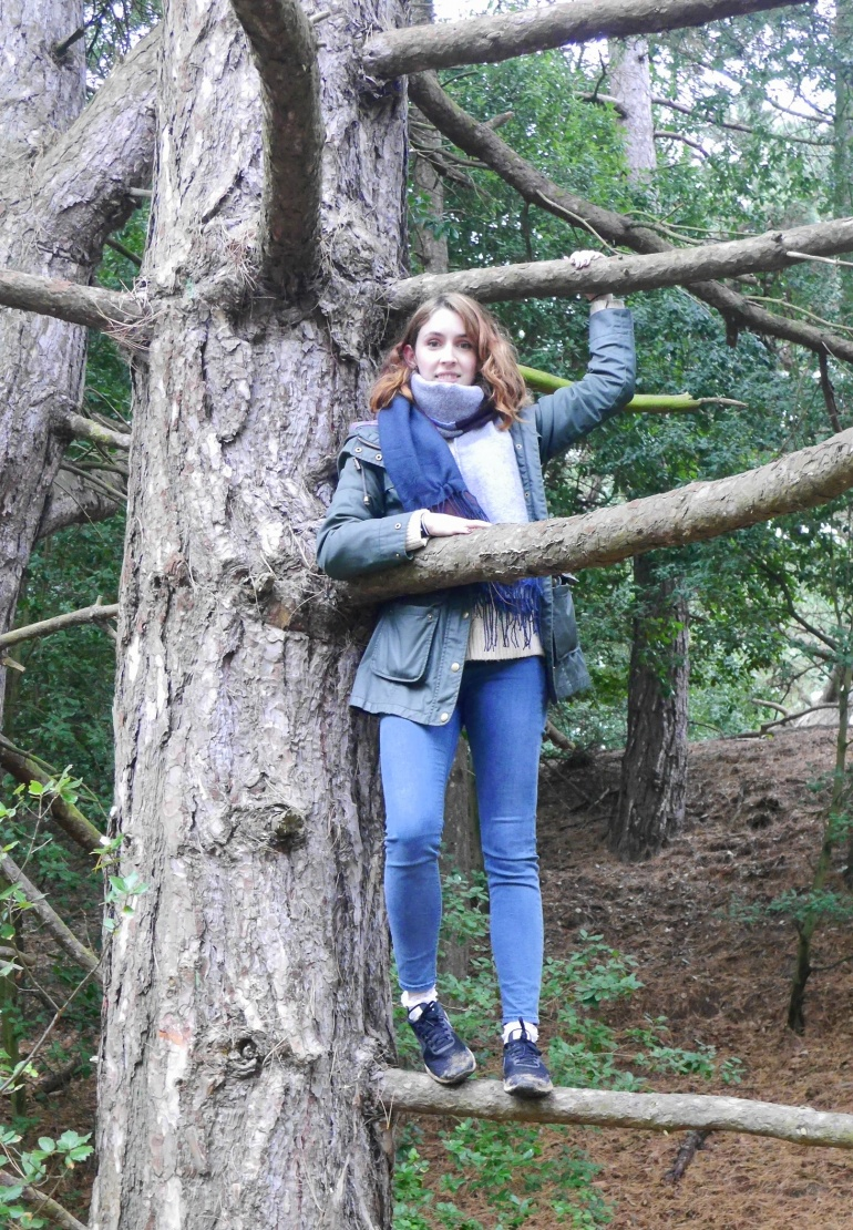 Blogger Tree Climbing