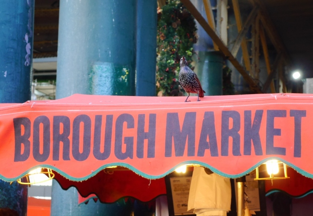 Bird at Borough Market