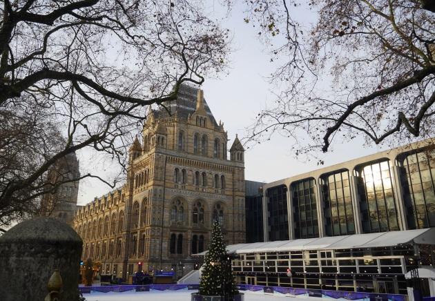 Natural History Museum in December
