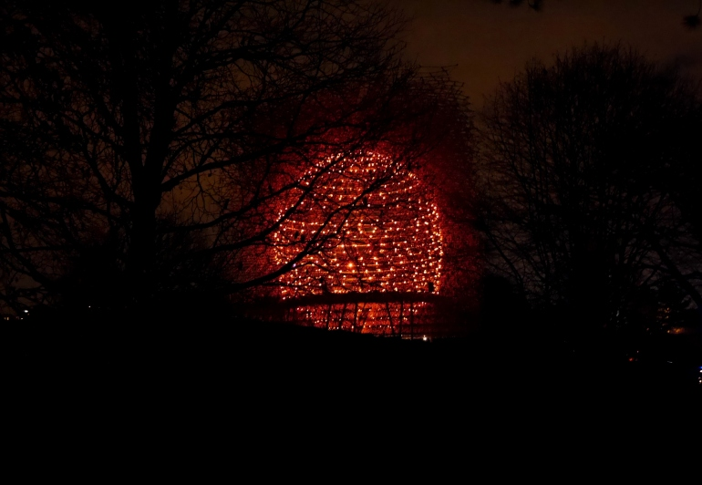 The Hive at Christmas at Kew