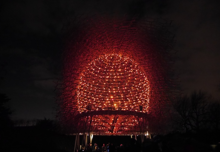 The Hive at night at Kew