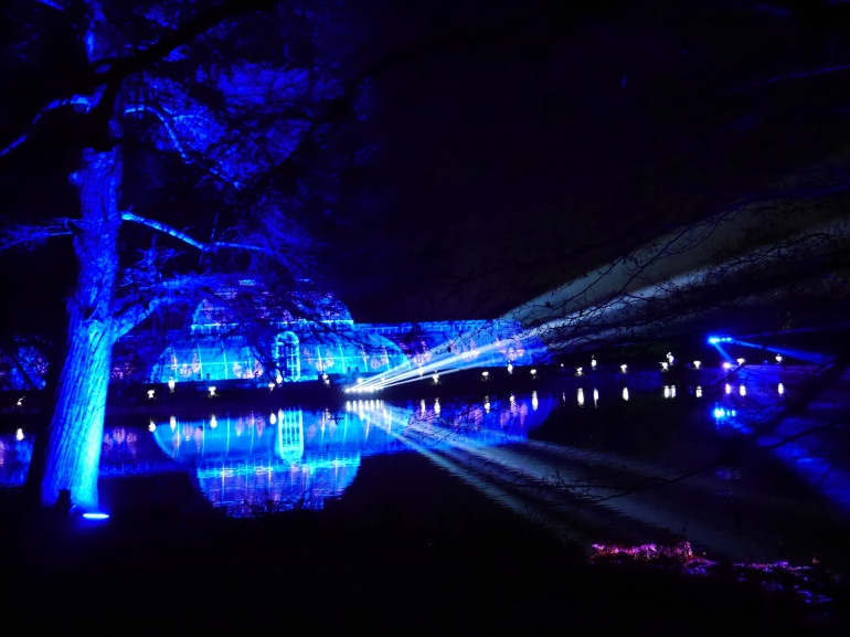 Kew Illuminations