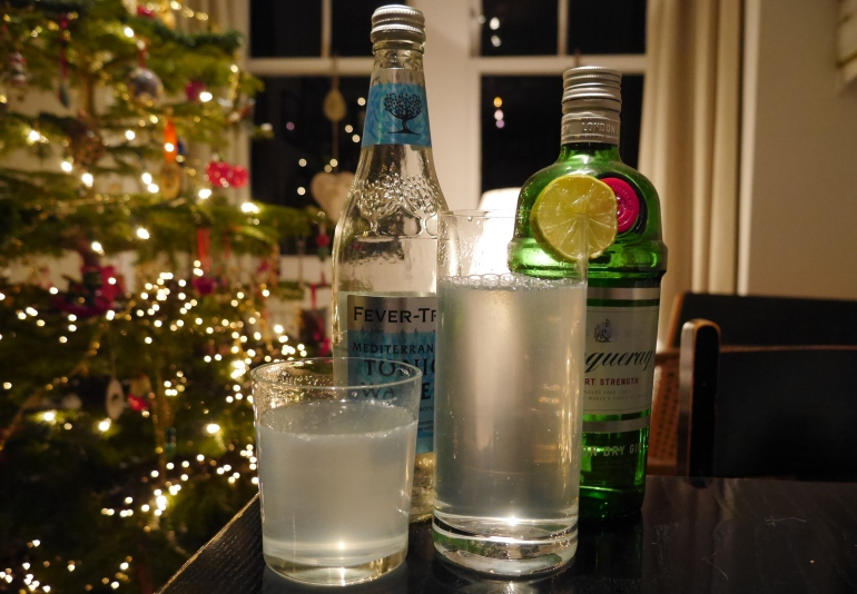Festive Gin and Tonic Photo