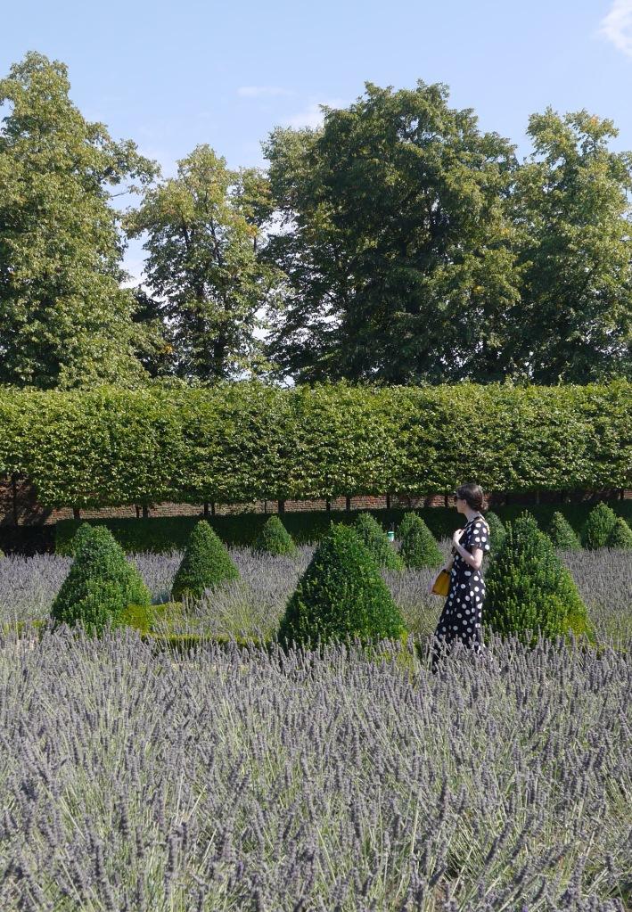 Blogger in Lavender Garden