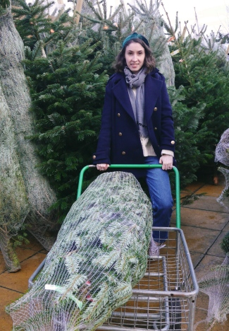Christmas Tree Shopping in London