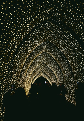 The Cathedral of Light Christmas at Kew